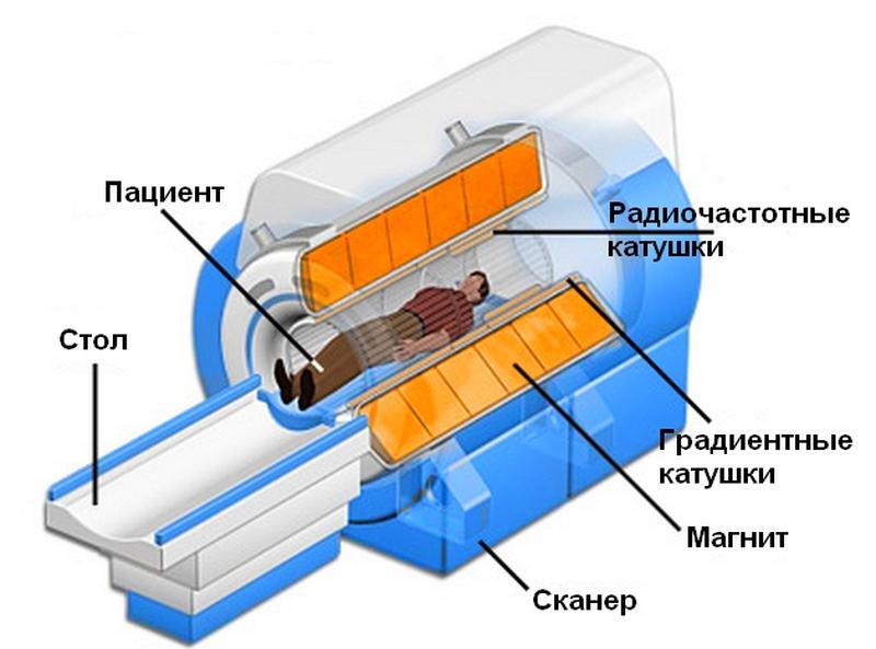 Устройство аппарата МРТ